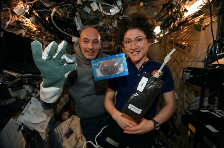 На МКС астронавты испекли печенье к праздникам