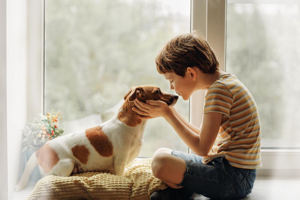 Собаки, возможно, влияют на развитие шизофрении у подростков