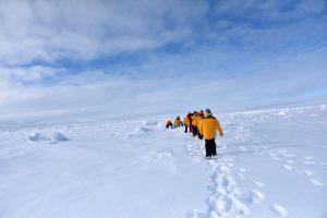 У участников длительной антарктической экспедиции уменьшился мозг