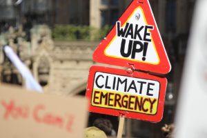 Европейский парламент объявил чрезвычайную климатическую ситуацию