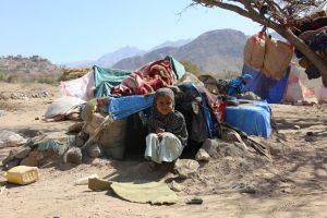 Из-за стихийных бедствий свои дома ежегодно покидают 20 млн человек