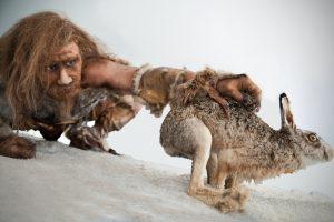 Генетики вычислили, сколько жили неандертальцы и мамонты