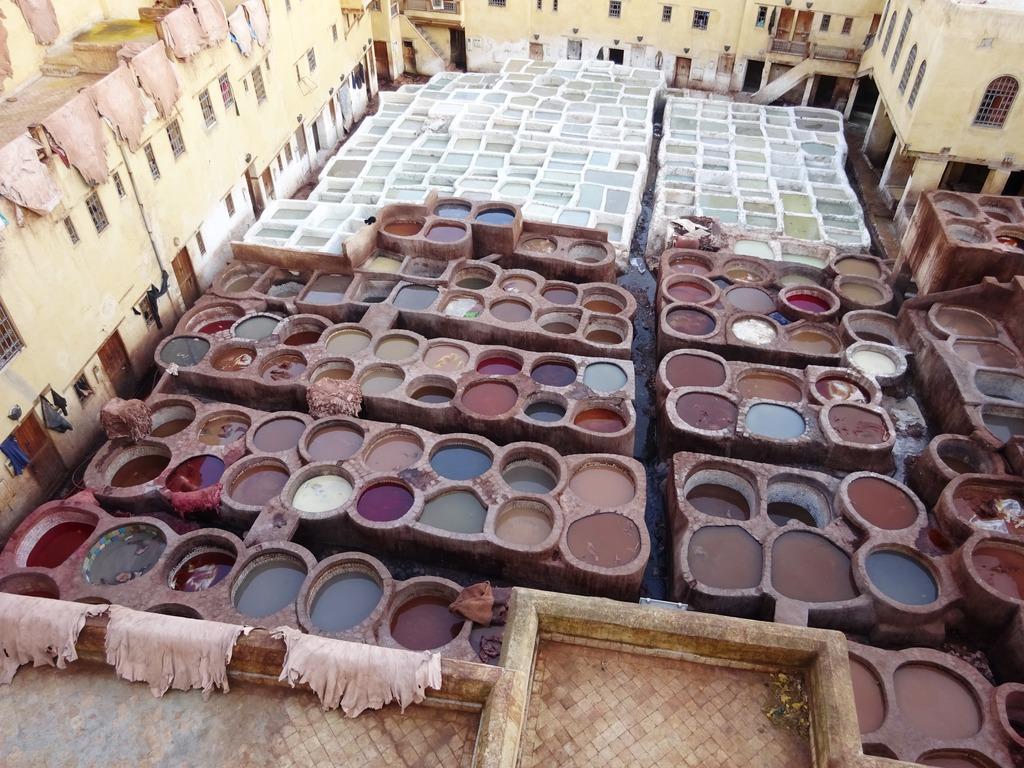 Фото Марокко Фес красильни