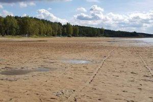 Почему обмелели Шацкие озера