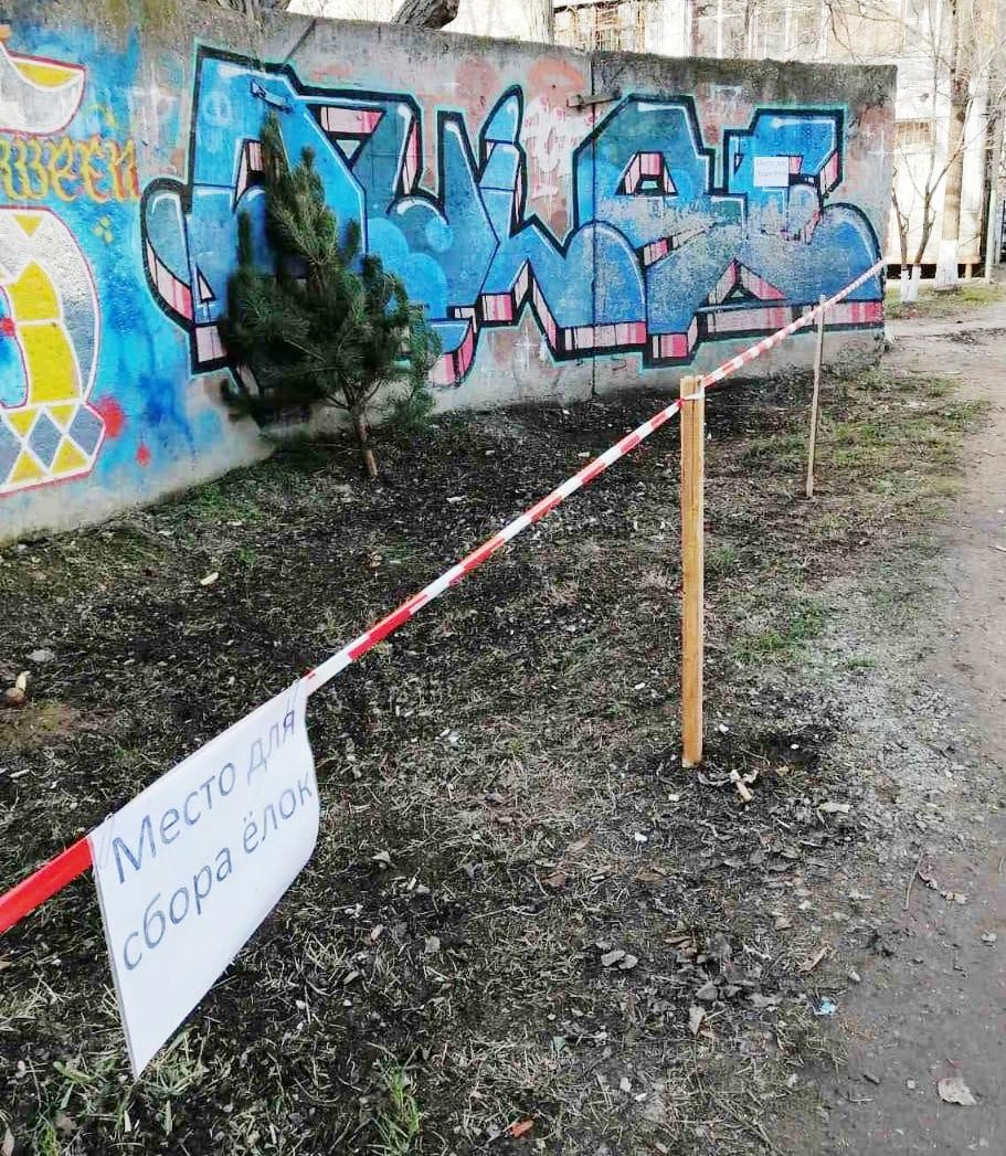В Одессе новогодние елки меняют на сладости