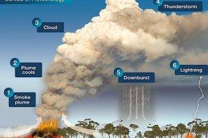 Лесные пожары в Австралии начали формировать погоду