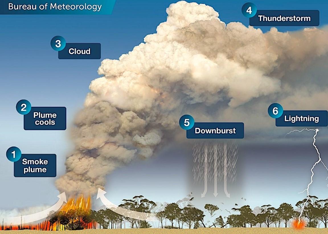 Лесные пожары в Австралии начали формировать погоду.Вокруг Света. Украина