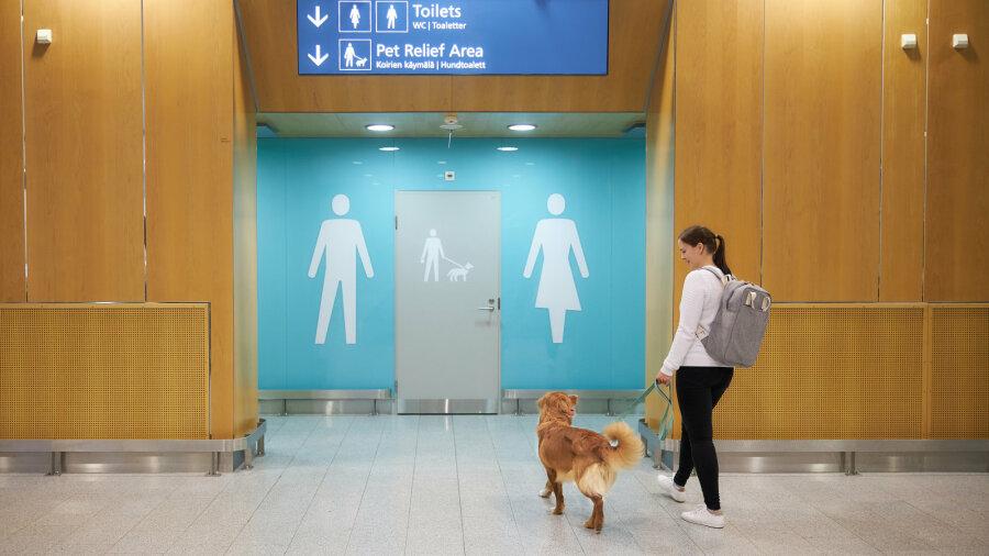 В аэропорту Хельсинки появились туалеты для собак