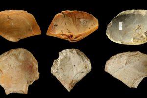 Неандертальцы были опытными дайверами