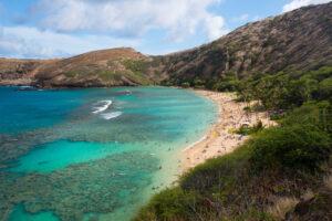На Гавайях из-за наплыва ядовитых медуз закрыли пляж