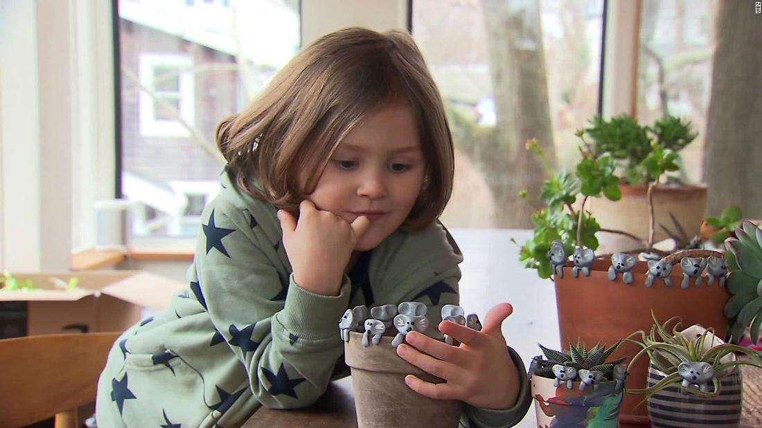 6-летний мальчик собрал $150 тыс на спасение коал, делая фигурки из глины