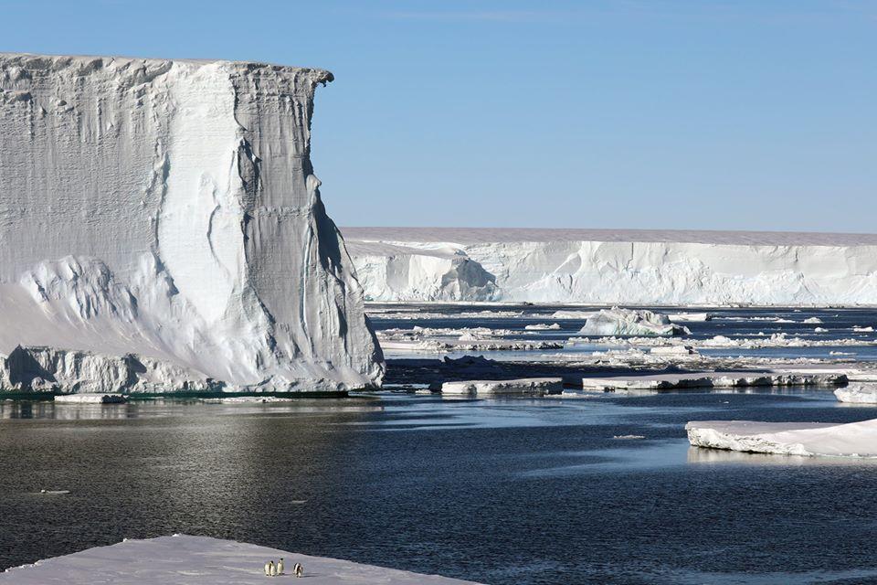 Таяние ледника Туэйтса поднимет уровень океана на 65 см?