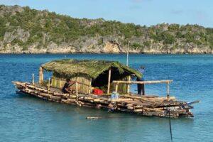 Исследователи повторят морской маршрут первых поселенцев Австралии на бамбуковом плоте