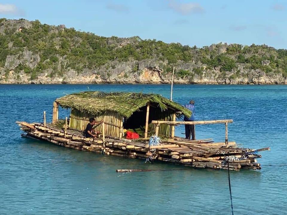 Исследователи повторят морской маршрут первых поселенцев Австралии на бамбуковом плоте.Вокруг Света. Украина