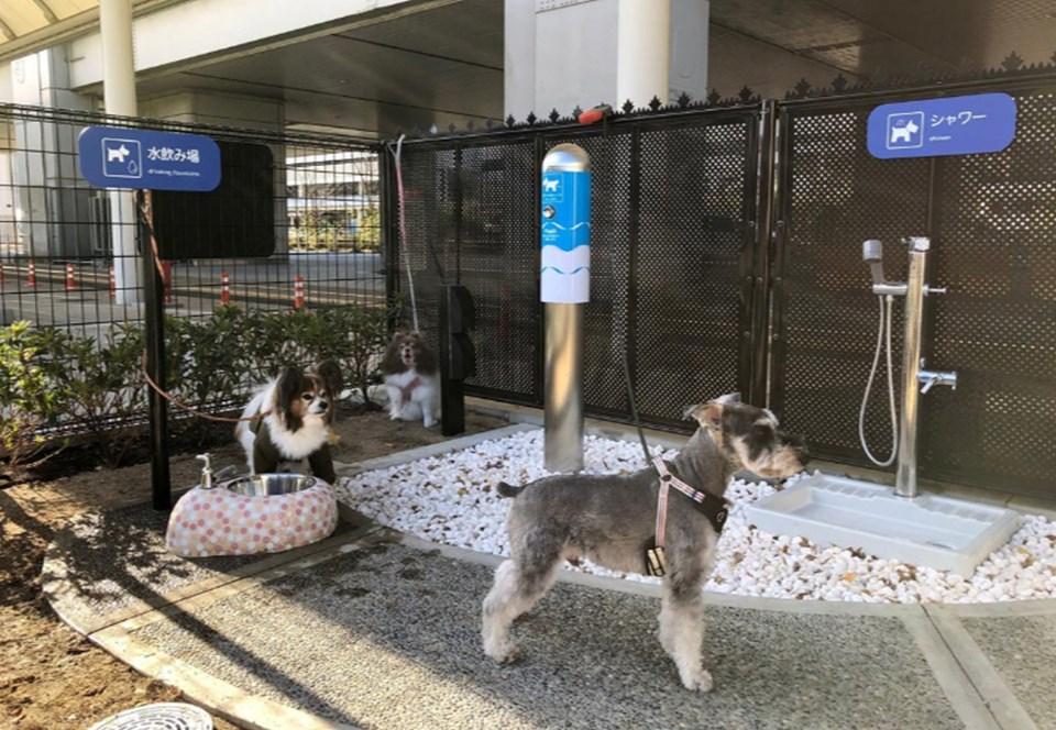 В аэропорту Осаки обустроили туалеты для путешествующих собак