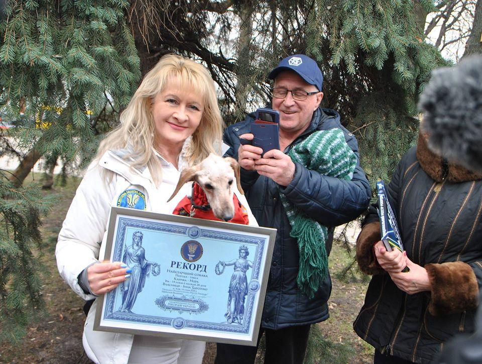 В Киеве умерла самая старая собака в Украине