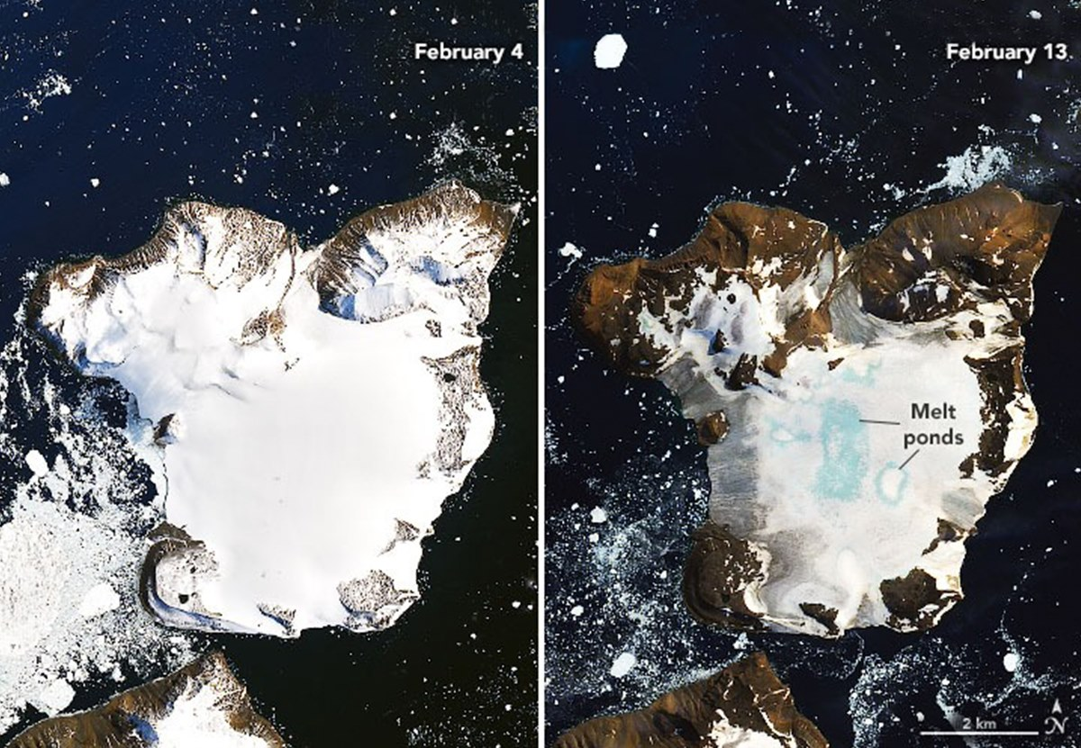 Антарктический полуостров разогрелся и подтаял