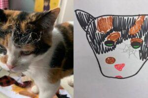 В США приют для животных зарабатывает странными портретами