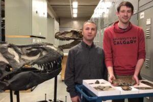 Жнец смерти: в Канаде открыли новый вид динозавров