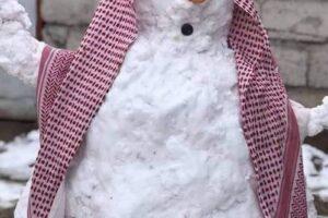 В Багдаде впервые за 12 лет выпал снег