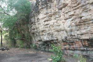 В Австралии нашли остатки еды первых поселенцев континента