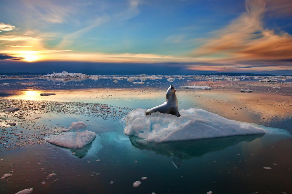 Гренландия будет продавать воду из тающих ледников
