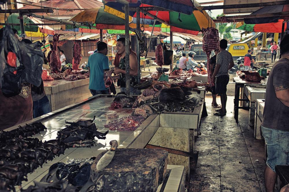 Индонезийцы едят летучих мышей, игнорируя коронавирус