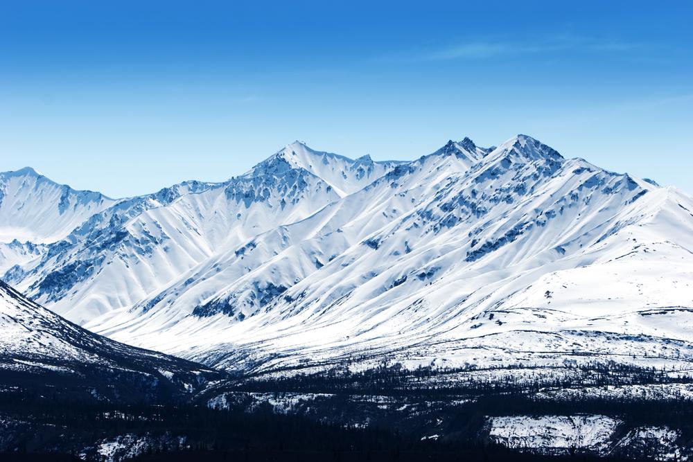 Потерявшиеся в снегах Аляски дети найдены живыми