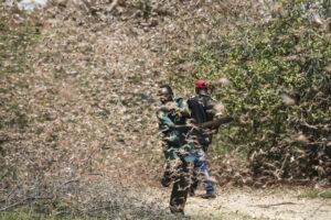 Уганда уничтожает полчища саранчи, спасая урожай кофе