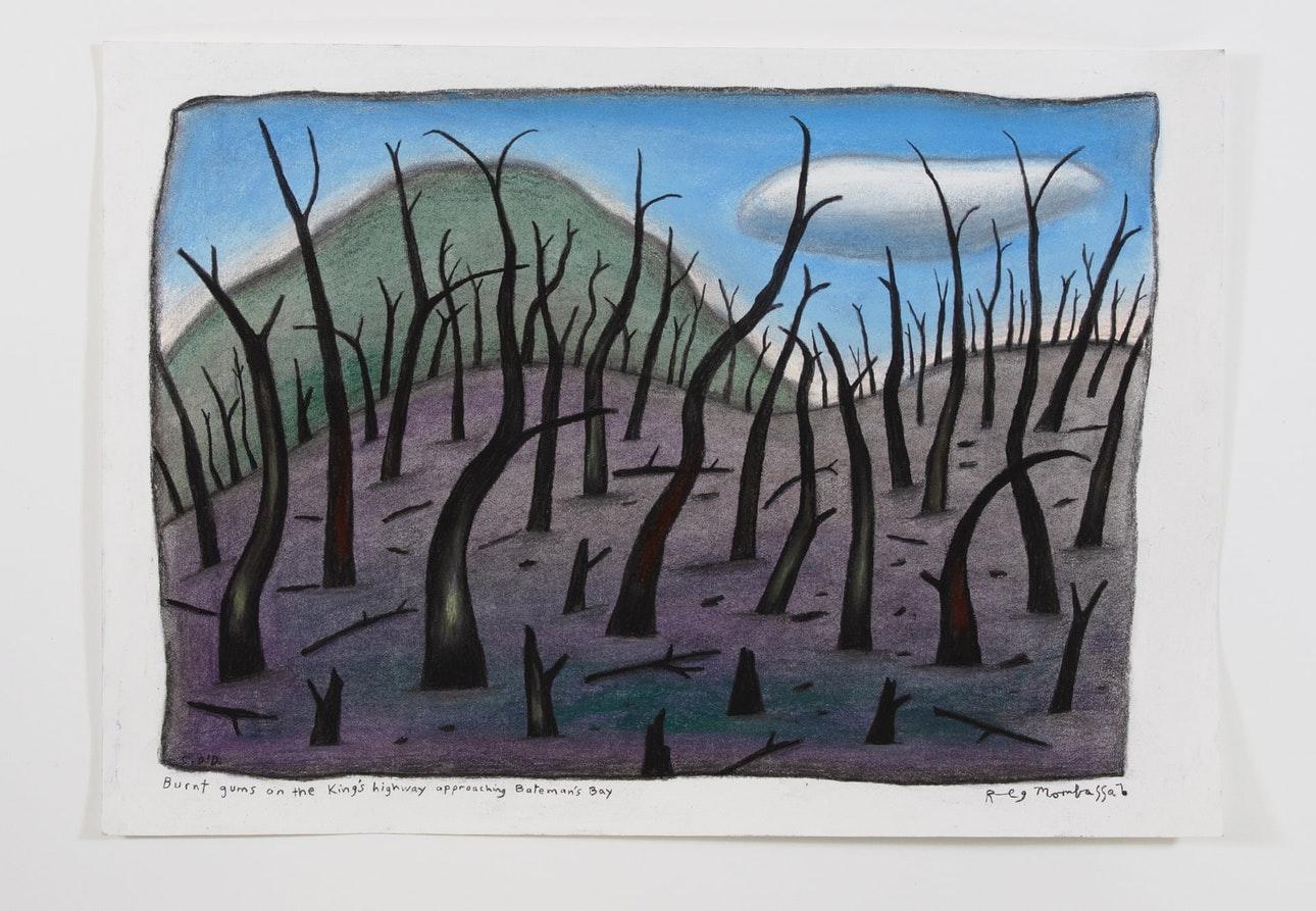 В Австралии продают картины, нарисованные углем от лесных пожаров