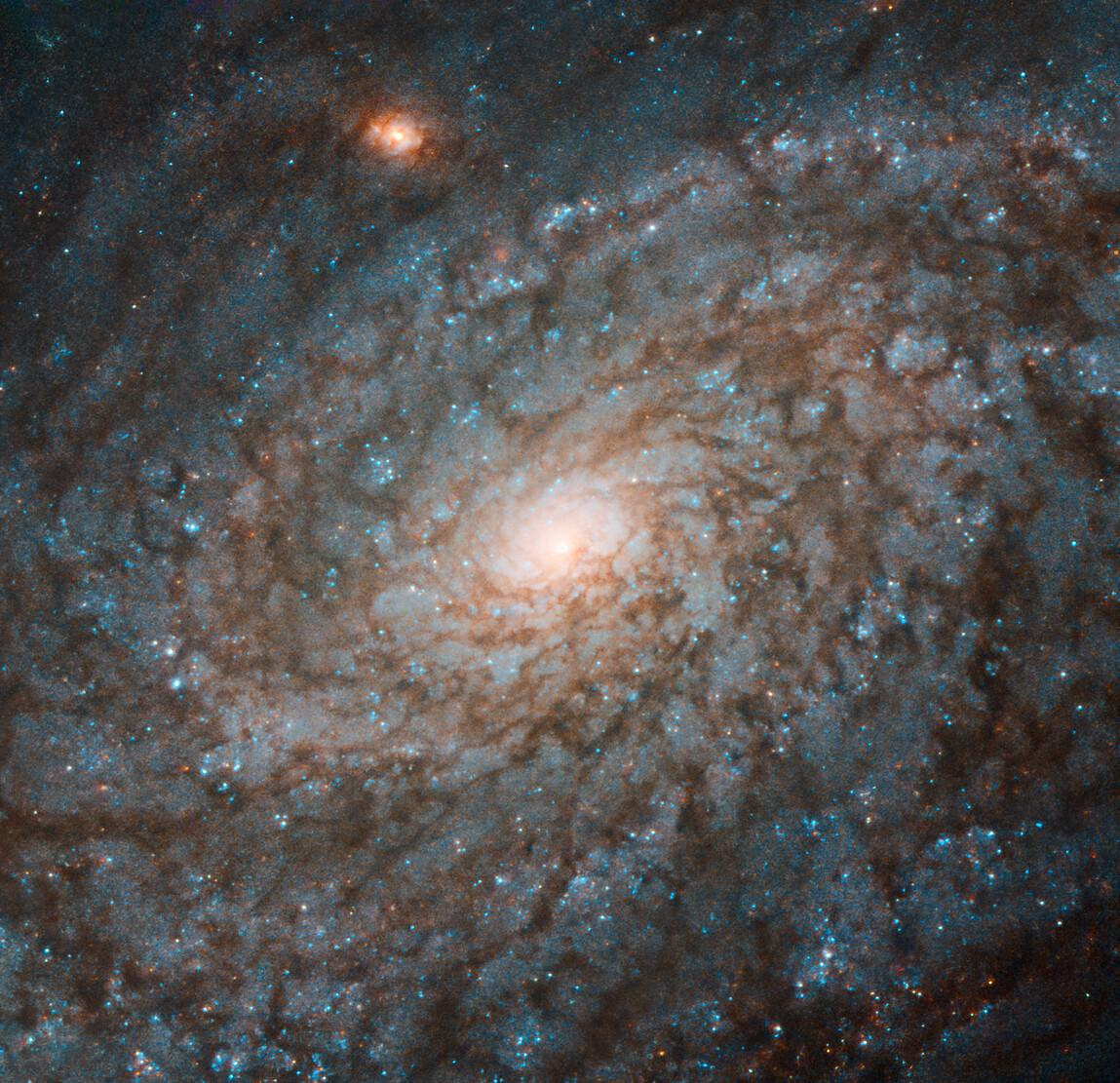 Телескоп Hubble сделал фото галактики