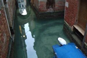 В Венеции каналы стали очень чистыми