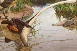 Обнаружен новый пернатый динозавр с хвостом-кнутом