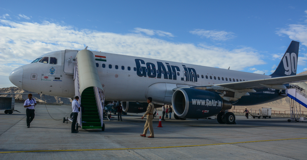 В Индии голуби носились по салону самолета перед отправлением (видео)