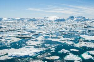 Прошлым летом Гренландия потеряла 600 миллиардов тонн льда