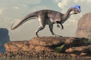 Шотландцы обнаружили полсотни окаменелых следов динозавров