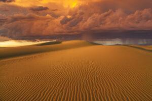 Пустыня Гоби: климат, обитатели, интересные факты
