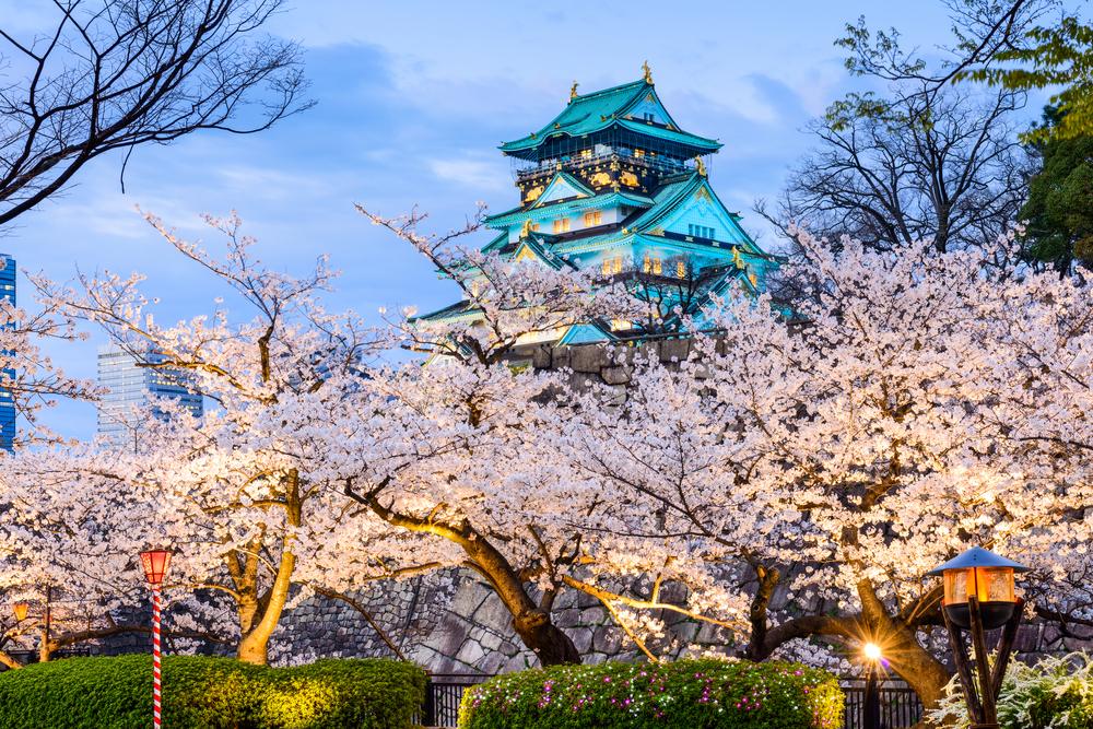 Этой весной в Осаке некому любоваться сакурой