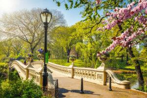 Астрономическая весна придет в северное полушарие раньше обычного