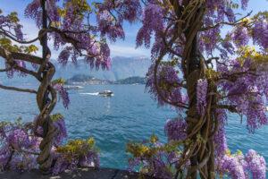 Комо: озеро и город — история, интересные факты, как добраться и на что посмотреть