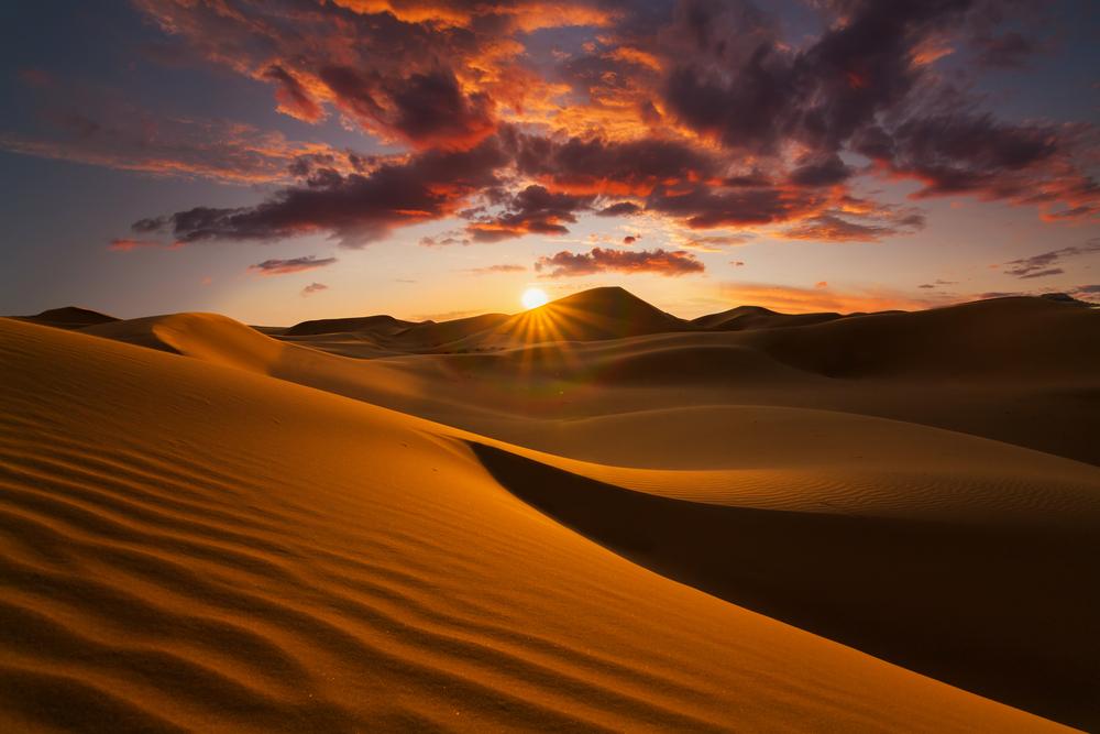 Пустыня Сахара: образование, обитатели, интересные факты