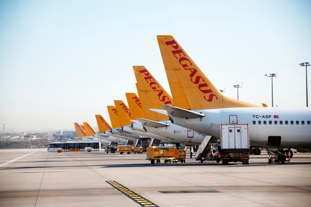 Pegasus Airlines разрешил бесплатно отменять билеты