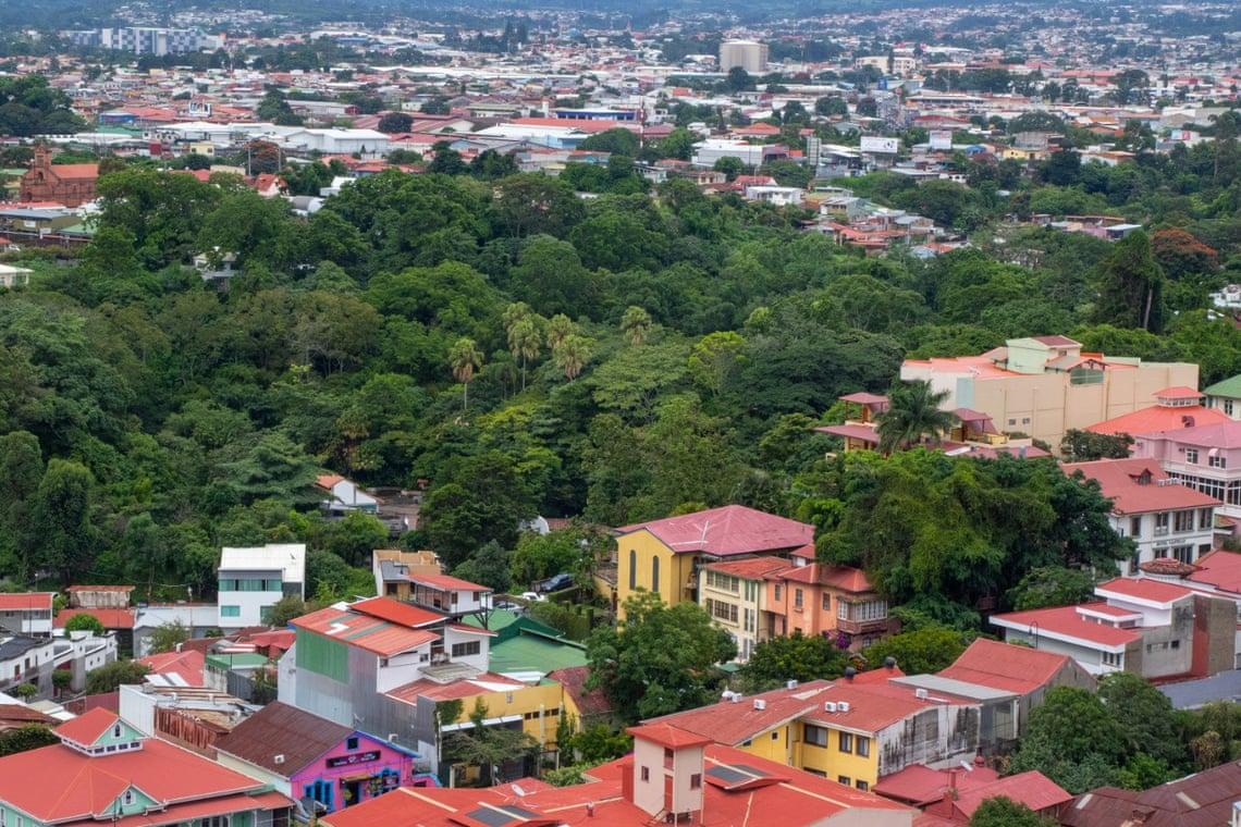 В Коста-Рике пчелы, растения и деревья получили гражданство