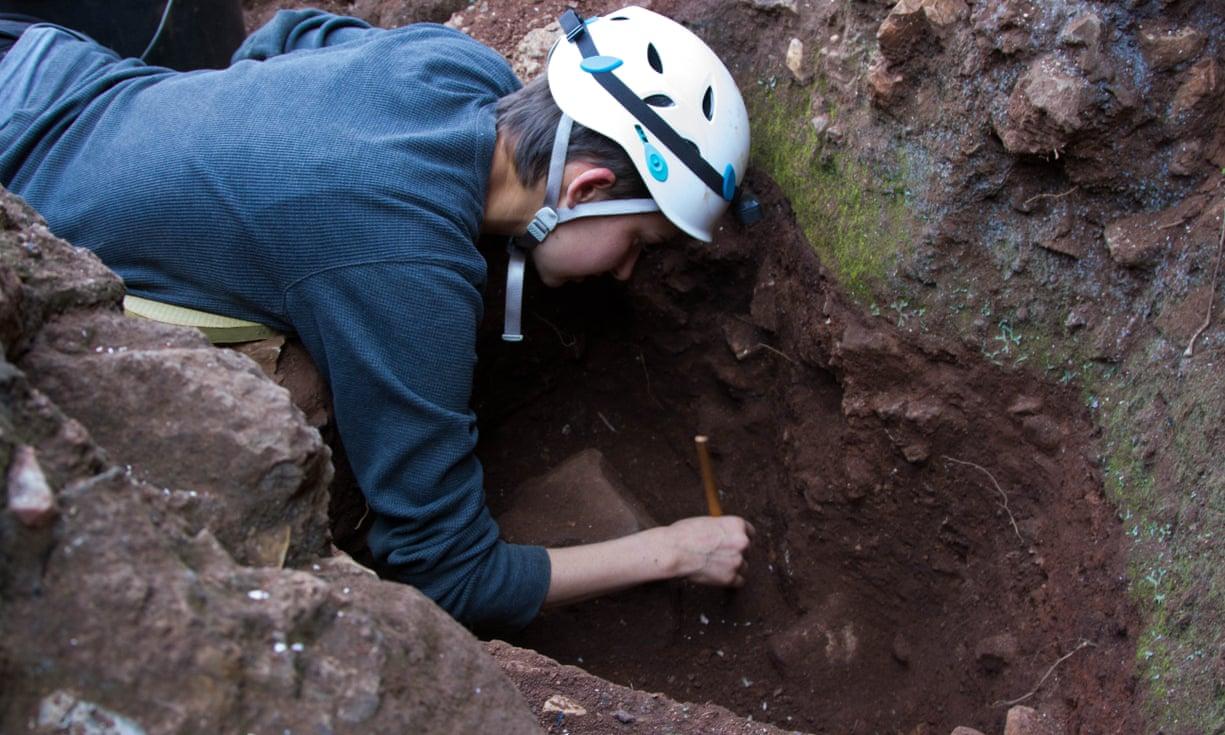 В ЮАР нашли древнейший череп предка человека.Вокруг Света. Украина