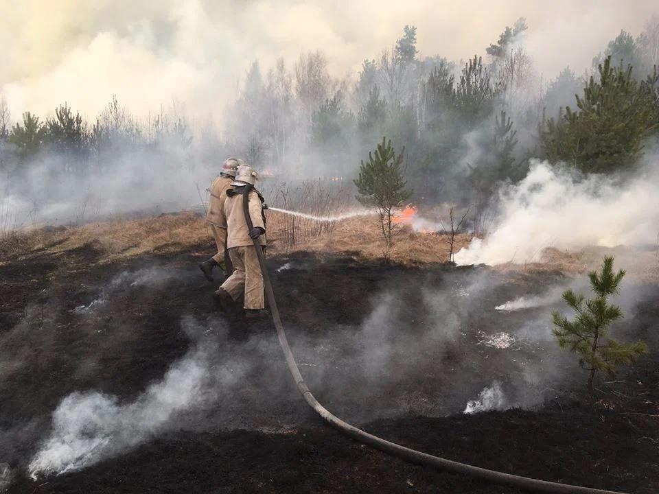 Пожары в Чернобыльской зоне: как из-за человеческой глупости гибнет природа.Вокруг Света. Украина
