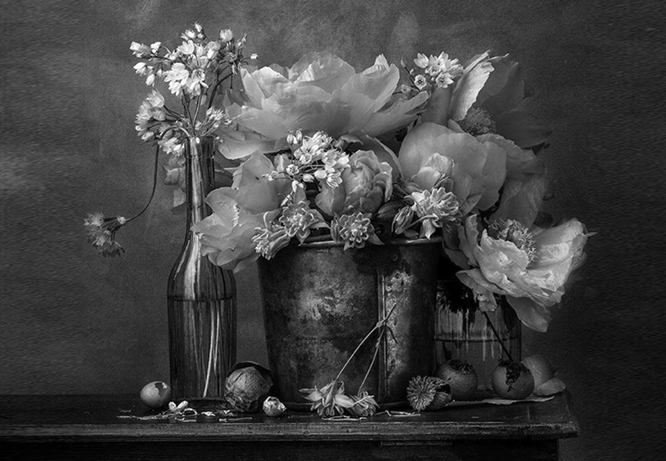 Конкурс «Садовый фотограф года»: фонтаны, стрекозы и вообще все, что мы пропускаем