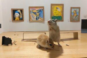 Итальянцы создали арт-галерею для грызунов