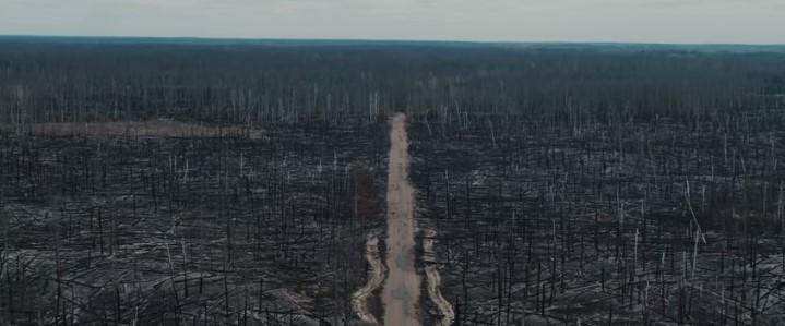 Абсолютный апокалипсис: чернобыльские леса после пожаров.Вокруг Света. Украина
