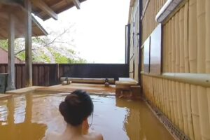Японские горячие источники можно посетить онлайн