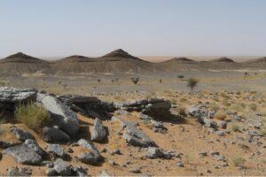 Палеонтологи нашли самое опасное место в истории Земли